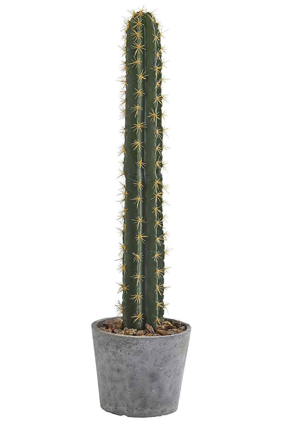 "41"" Faux Cactus"