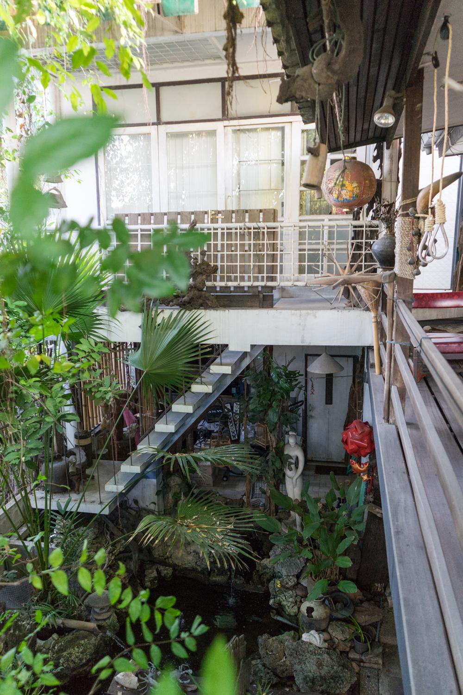 Sue Sue's Tree House