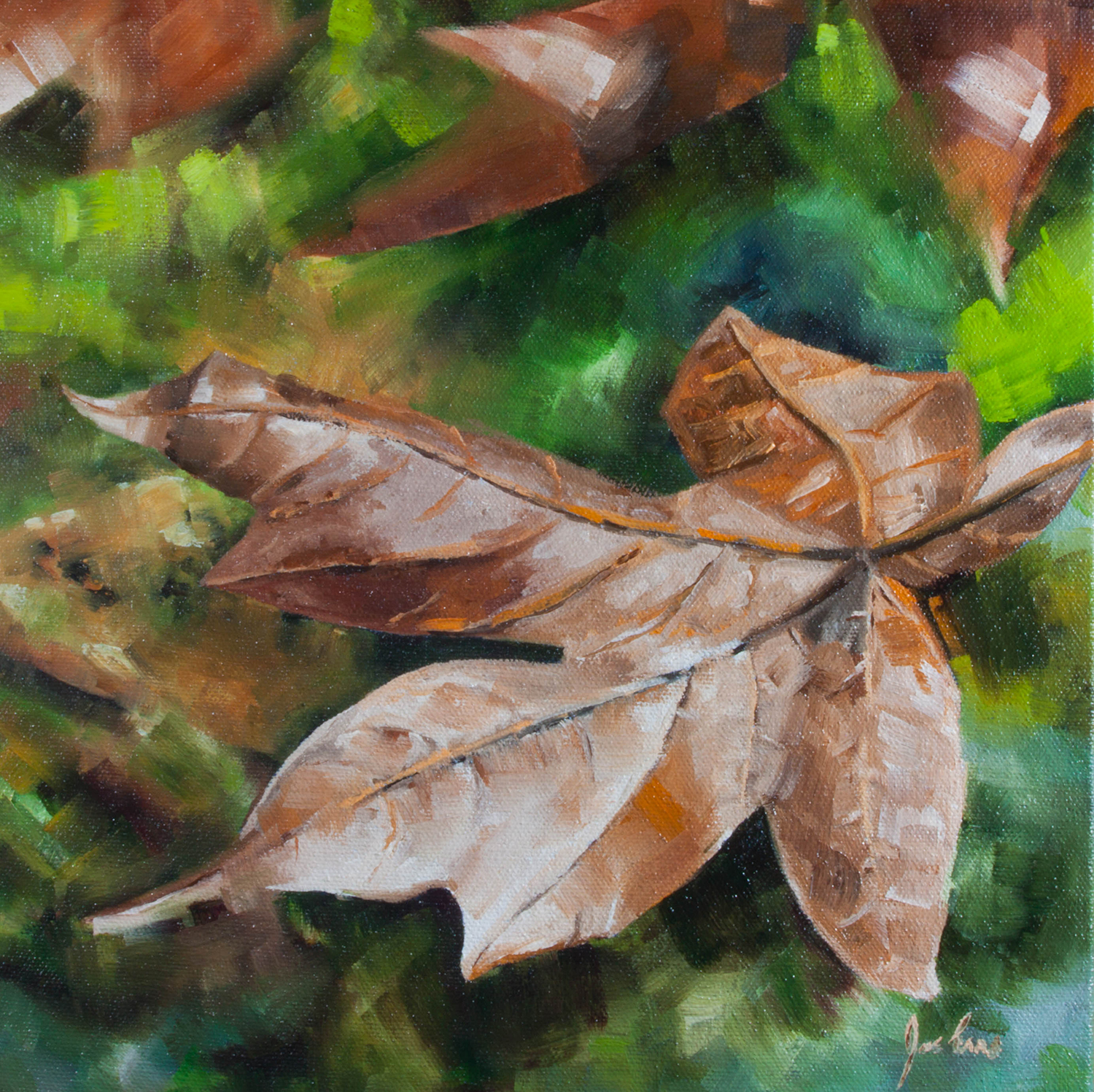 """Goldstream Maple Leaf"" is a still life oil painting by Joe Enns from a photo that Joe took along the Goldstream River in Goldstream Provincial Park on Vancouver Island, British Columbia."