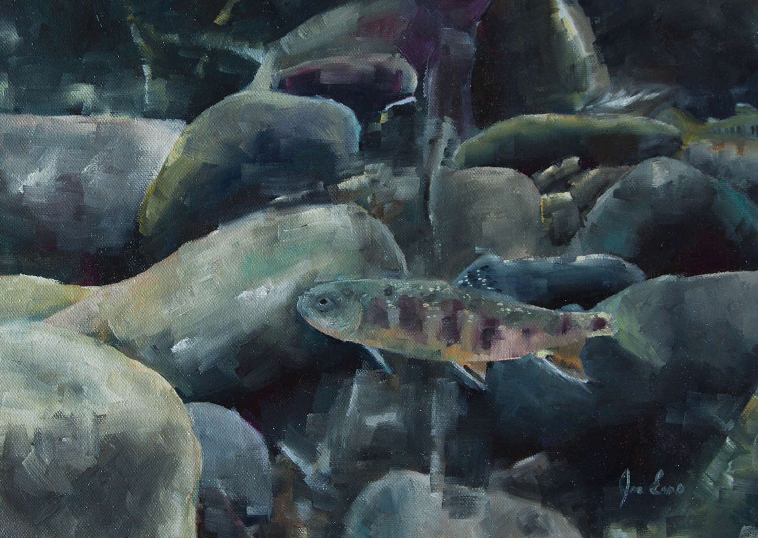 """""""Brook Trout 1"""" is a still life oil painting by Joe Enns done from an underwater photo that Joe took of a Brook Trout in a tributary to Okanagan River in British Columbia."""