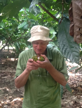 Albertus Eskes analyzing cacao. Photo credit: Albertus Eskes.
