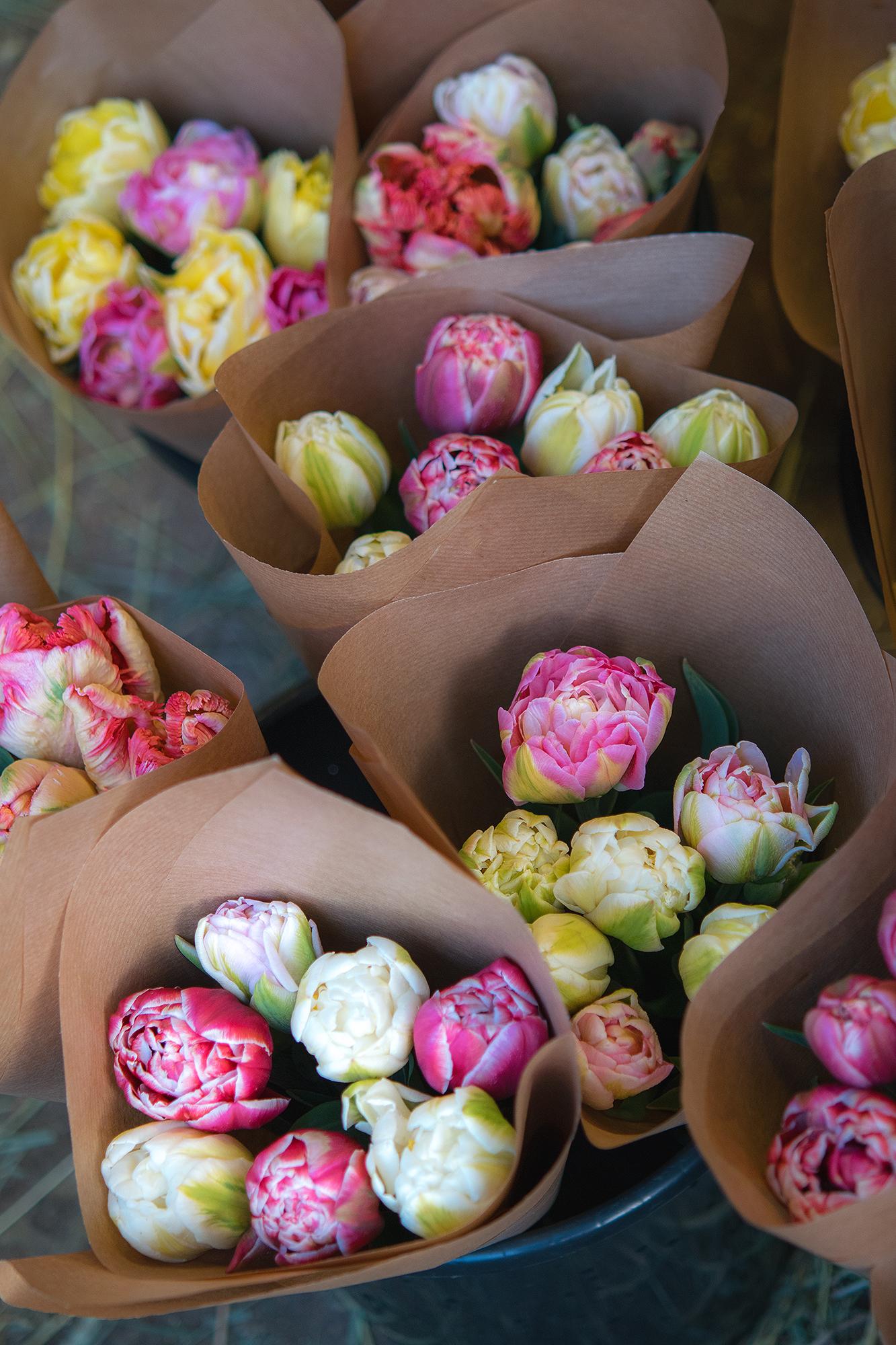Här finns våra blommor - Våra blommor och buketter finns framförallt hos oss i vår egen trädgårdsbutik, under säsong (omkring mellan april-oktober)Våra blommor finns även att köpa vid vissa tillfällen hos Cafe Mandeltårtan i Ronneby. Mer om detta kommer!Ibland finns vi på olika marknader med våra blomster. Följ oss på sociala medier för att säkrast se var vi kommer vara/brukar vara.