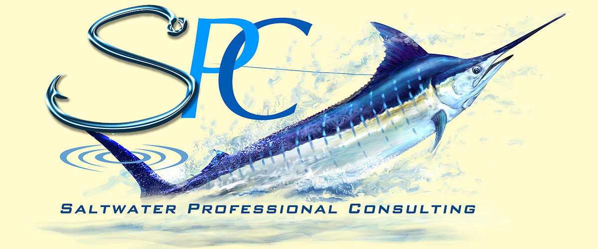 Saltwater Professional Consulting.jpg