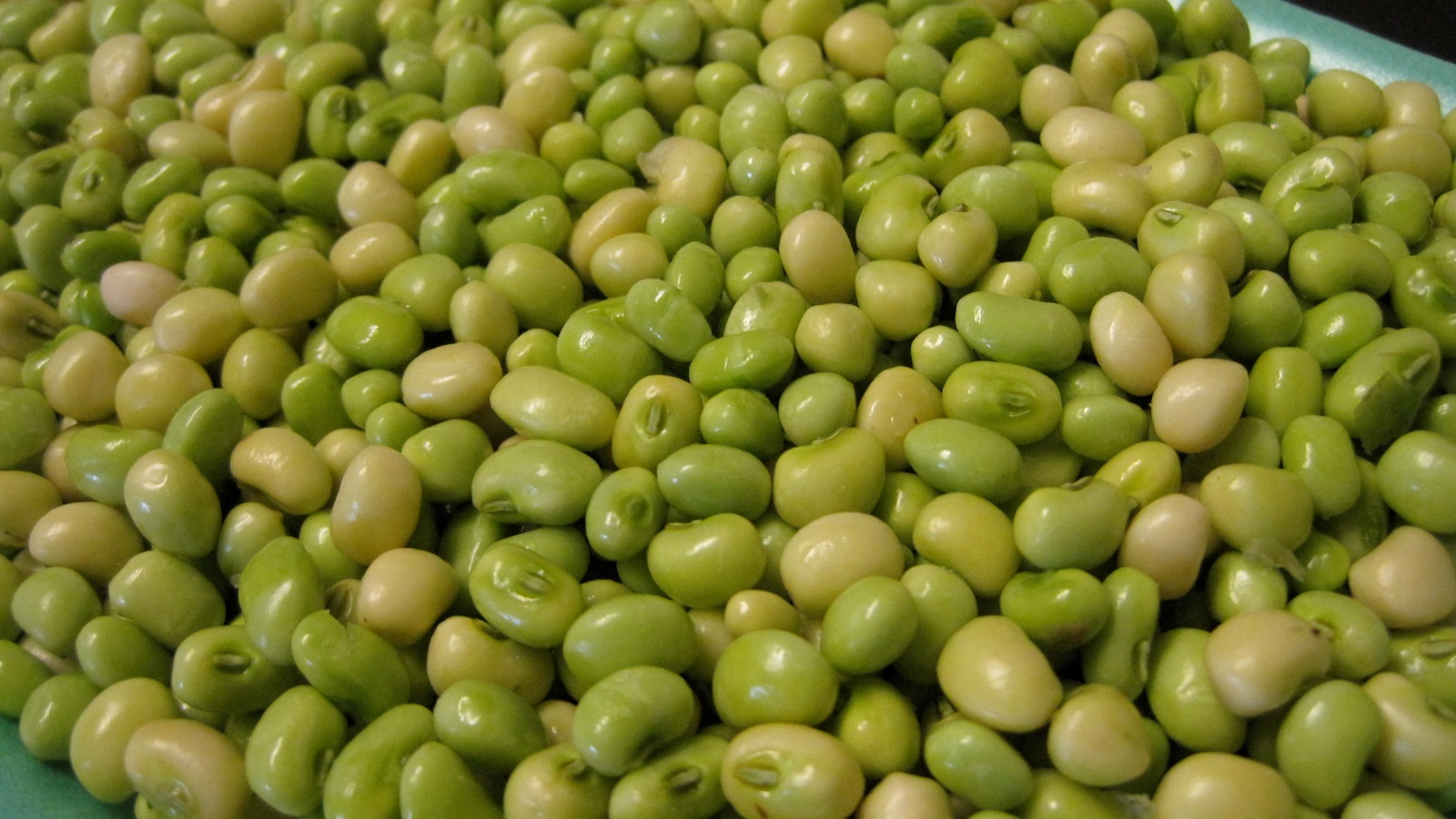 Southern Peas - Fresh, local, seasonal, shelled peas and butterbeansPea & Bean Varieties Currently Available: Cream 40 Peas, Cream Elite Peas, Pink Eye Purple Hull Peas, Butterpeas, & Butterbeans