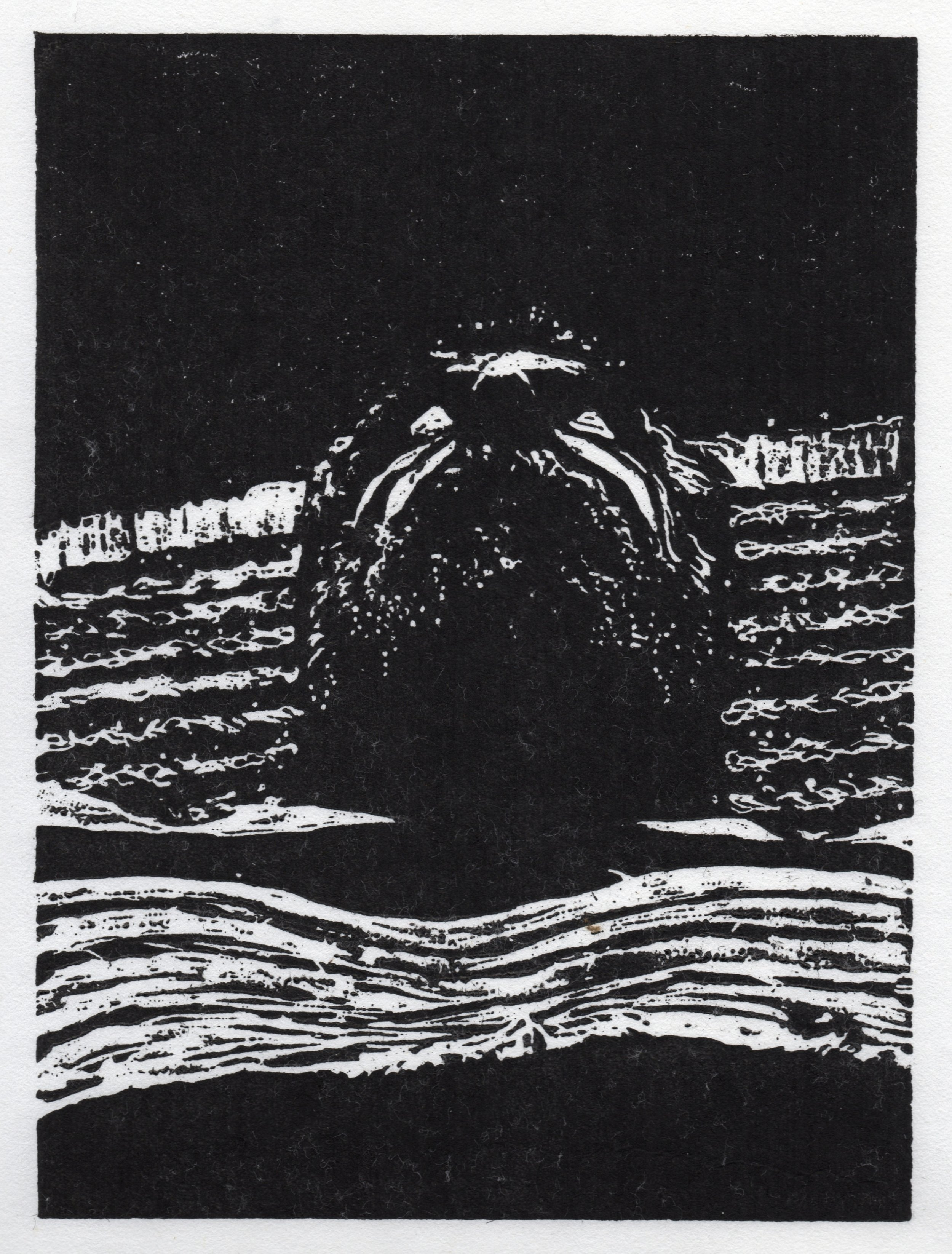 Patriot Act_Stars_woodcut @11x14.jpg