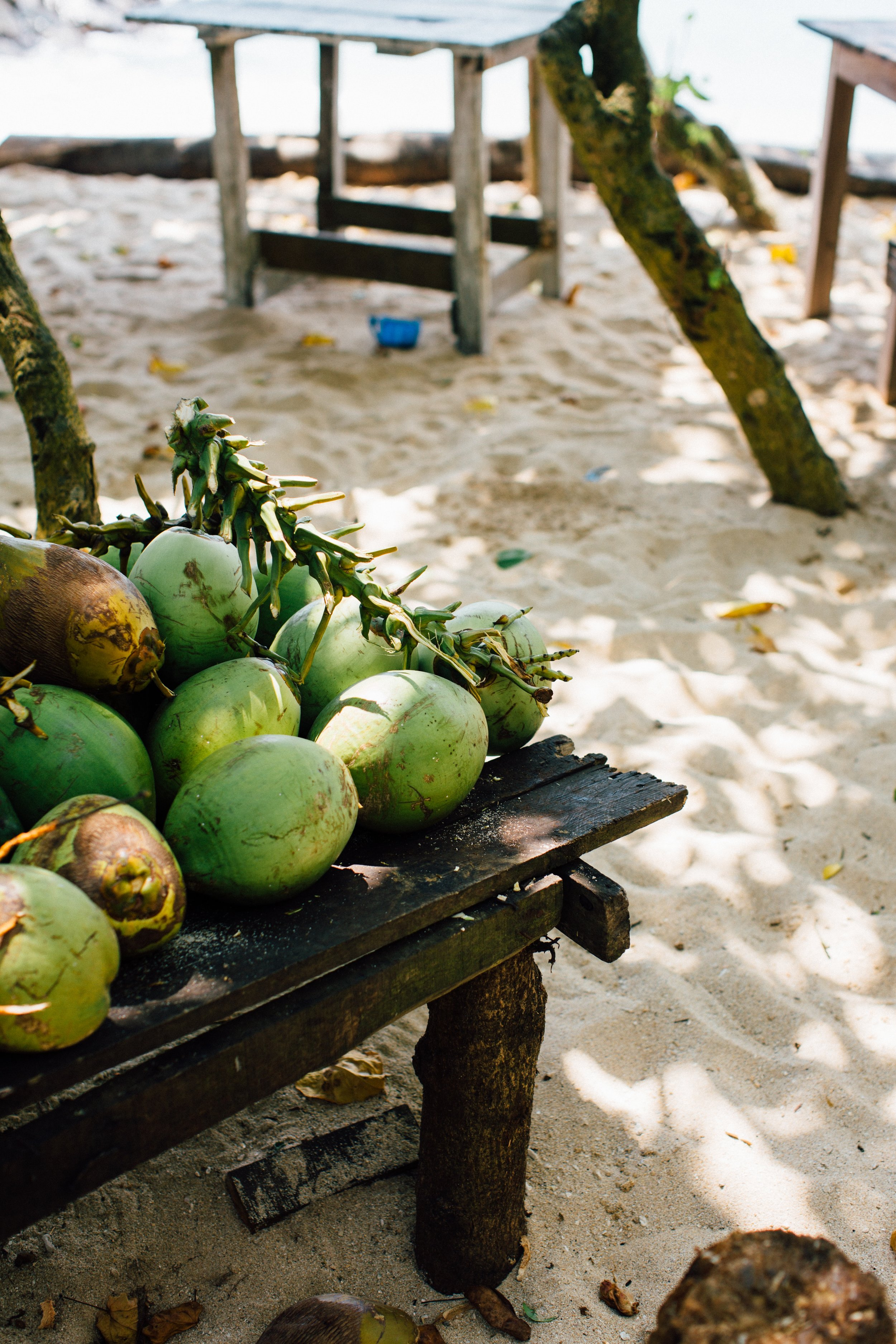 A VEGAN ADVENTURE IN SRI LANKA - An Exploration of Sri Lanka's Vegan Food, Environmental Conservation efforts & Zero-Waste Travel.Dates: January 25th 2020 to February 4th 2020 (11 DAYS)Location: Sri LankaGroup Size: 9-14 (small)Price: $2,375 USDAbout Us: Escape To provides vegan travel immersions with 100% vegan food, sustainability and vegan workshops and a commitment toward plastic-free travel.