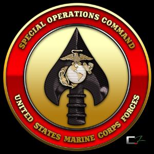 USMC Special Operations Command Emblem [MARSOC][1.5x1.5].png
