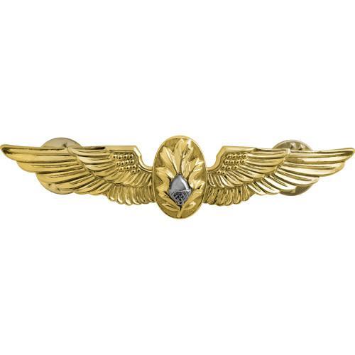 navy_flight_surgeon_insignia_1582_grande.jpeg