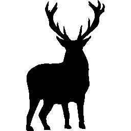 003-deer-silhouette.png