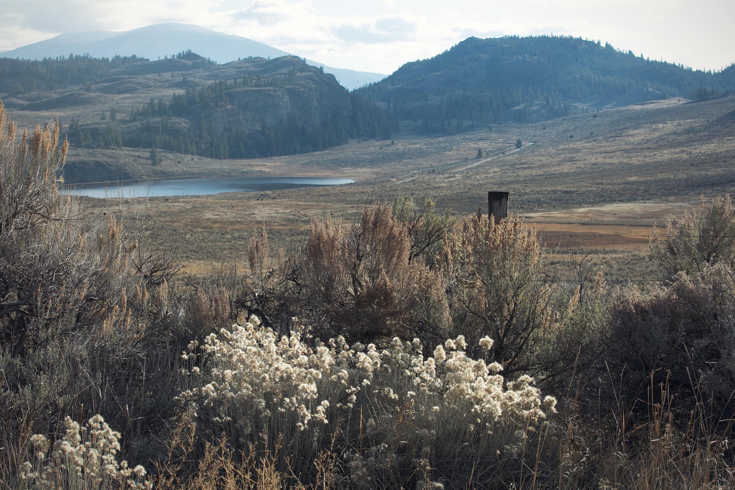 White Lake - stunning South Okanagan backdrop