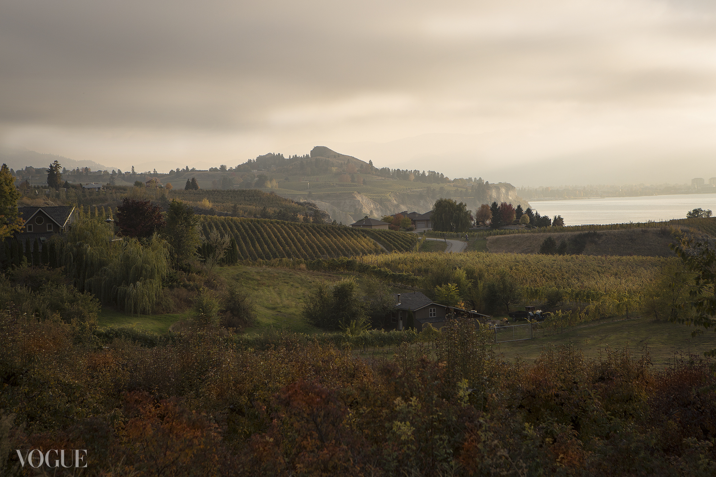 Landscape photo – looking out over Howling Bluff Winery, Naramata, BC