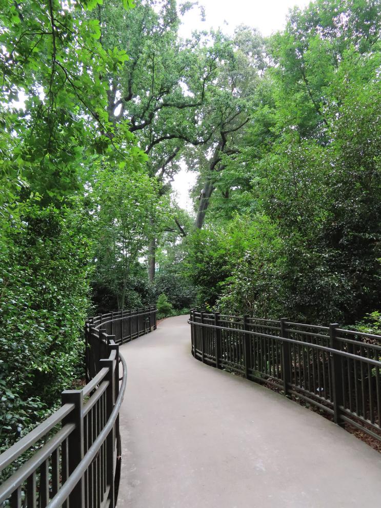 Atlanta Botanical Gardens_Walkway_GA_K.Martinelli Blog_Kristen Martinelli.png