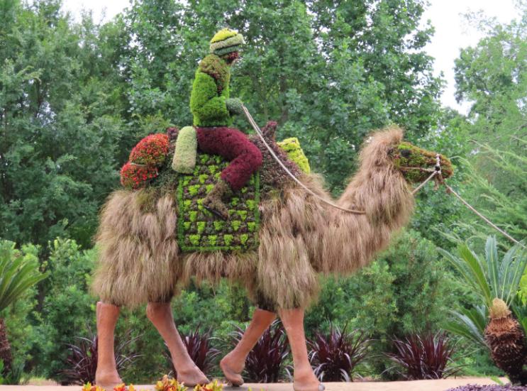 Atlanta Botanical Garden_Atlanta Georgia_Camel 1_K. Martinelli Blog _ Kristen Martinelli.png