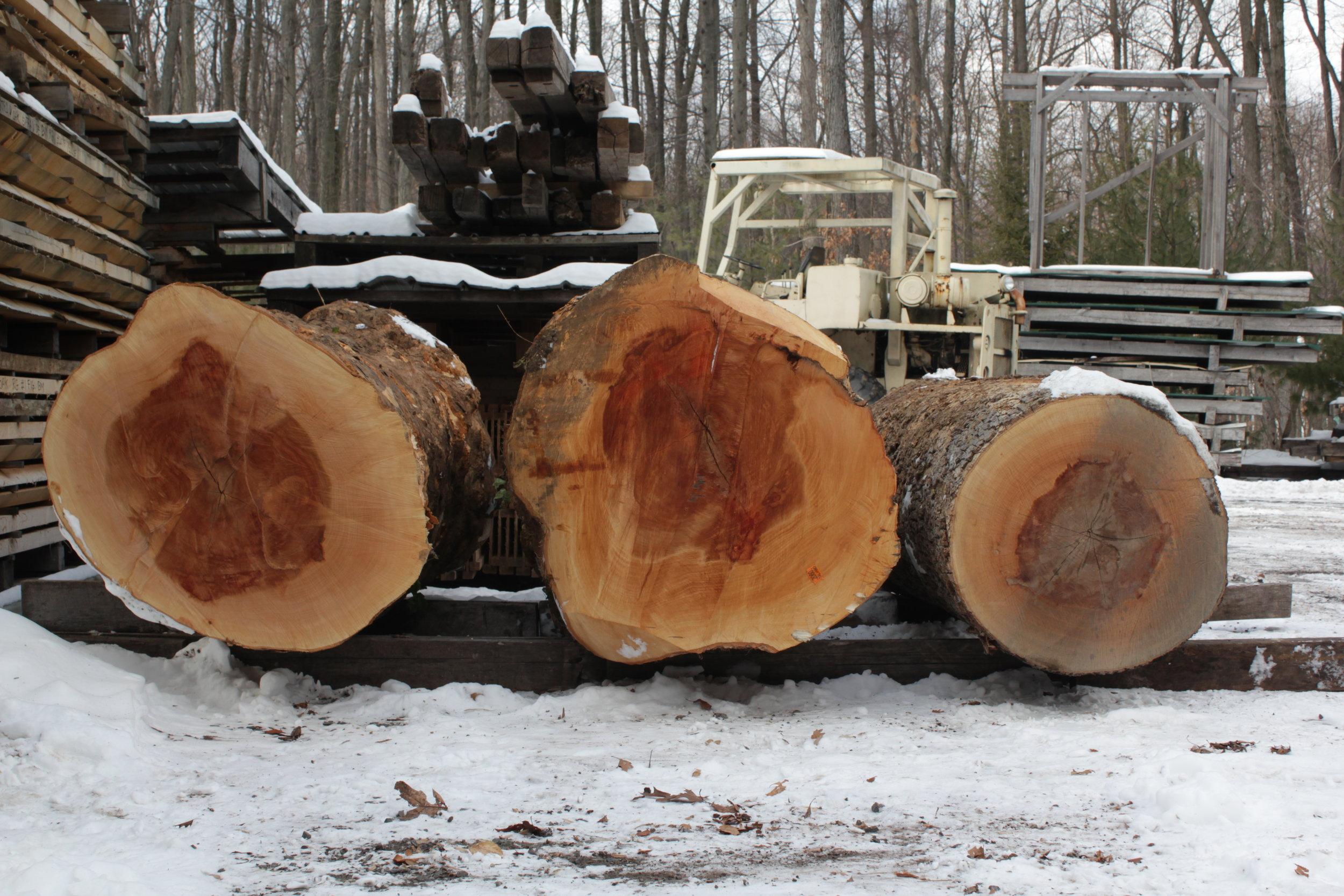 Hardwood supplier visit