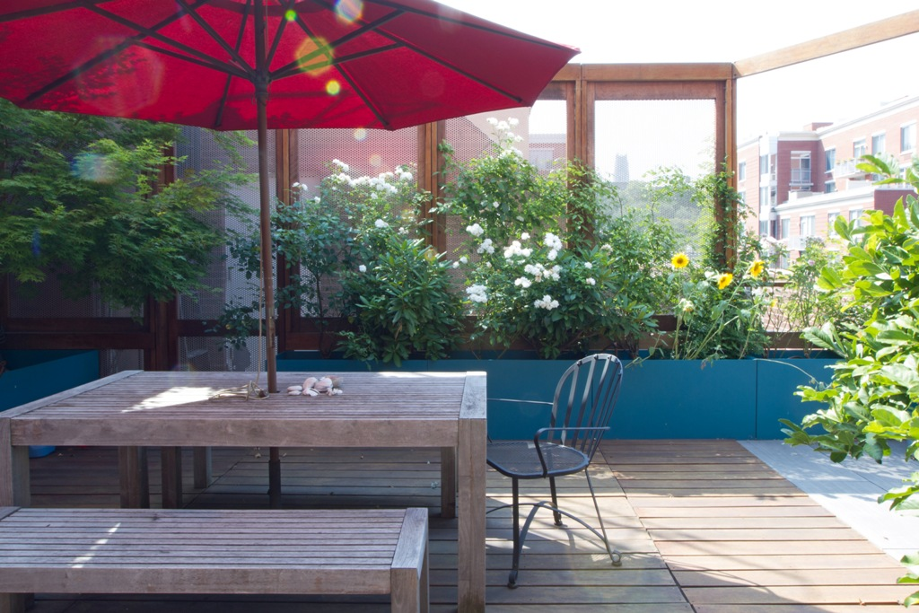 small_ROOF TERRACE 02 - VIEW 01.jpg