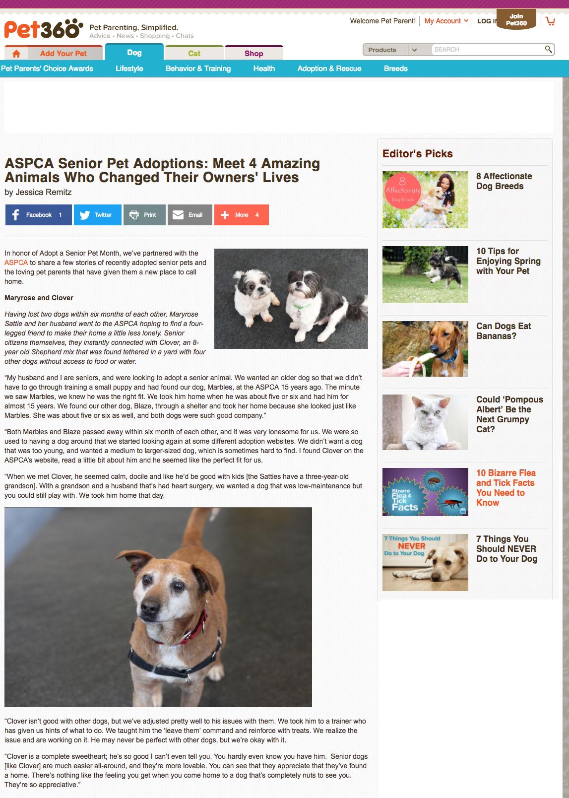 ASCPA Senior Pet Adoptions_Pet360 copy.png