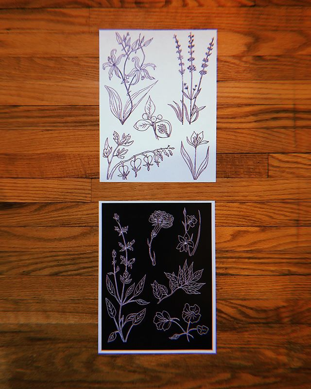 Did u know for a limited time you can get a plant healing print for a Queen Elizabeth and some change? Link in bio! 🙏🏻💛✨