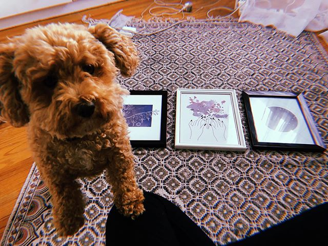 Caught up with my new sales rep Maya in between photoshoots today! She implores you to check out our prints through the link in bio! Apparently you can get 20% off with the code INSTAFAM20 too. What a day to be alive 💫 #mayathepoochon