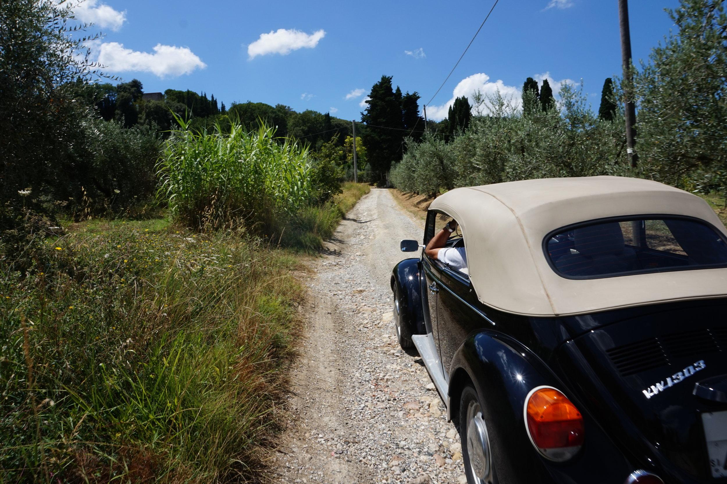 Hike Walk Trek in Tuscany