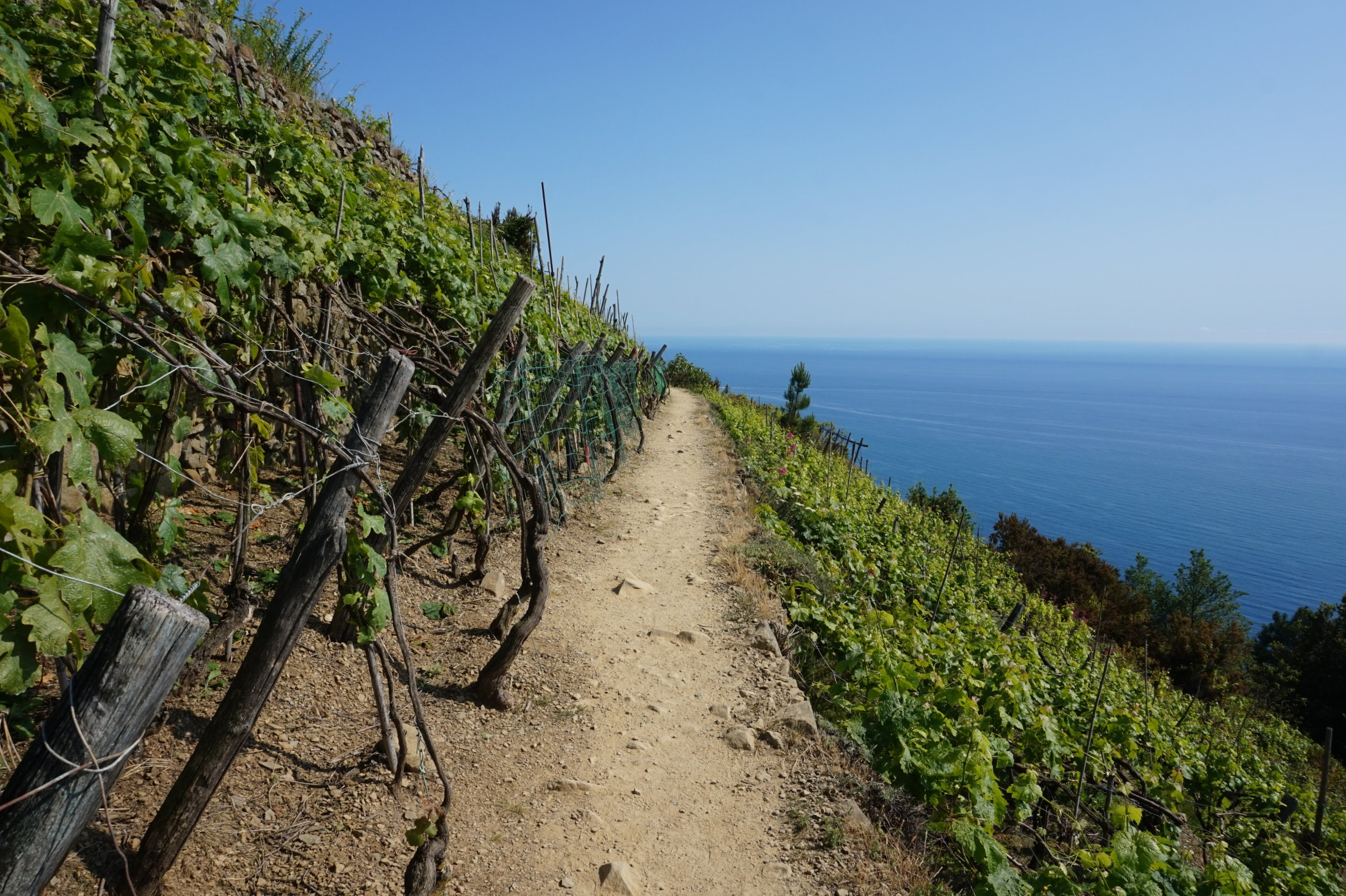 Walking in Cinque Terre, Hiking Tours
