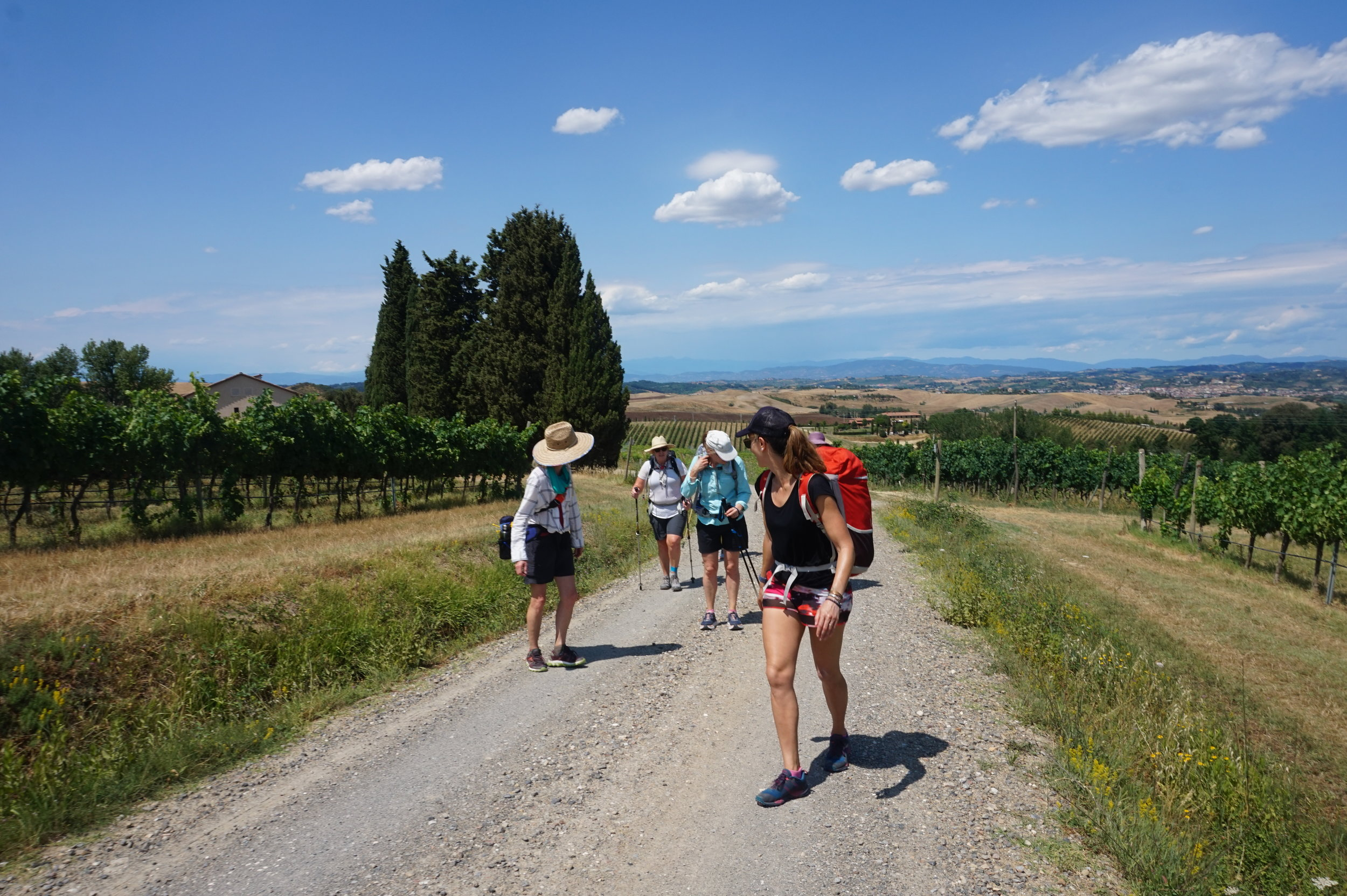 Via Francigena Hiking Tours