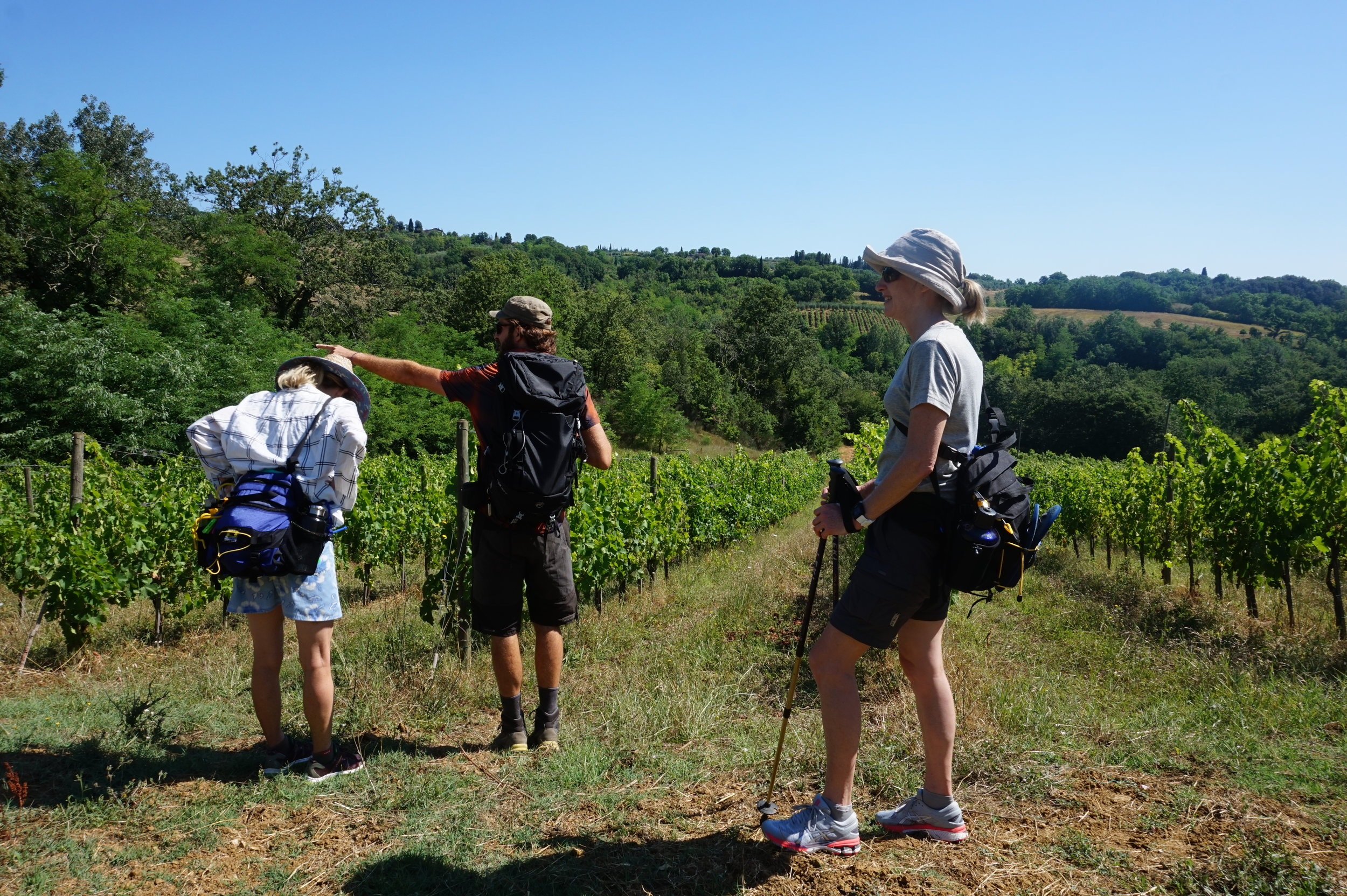 Hiking Tours Via Francigena