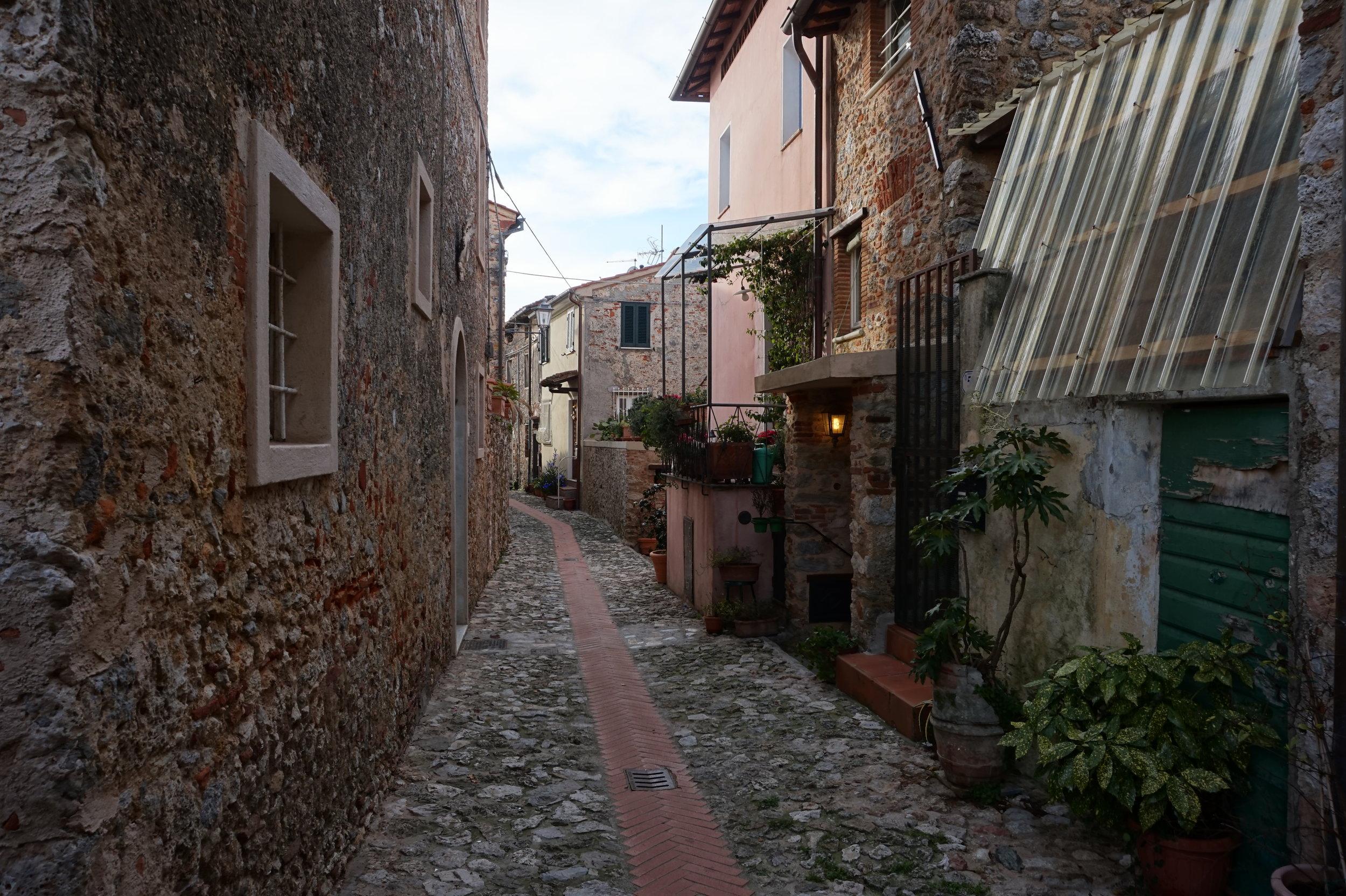 Walk Hike Versilia Camaiore Tuscany