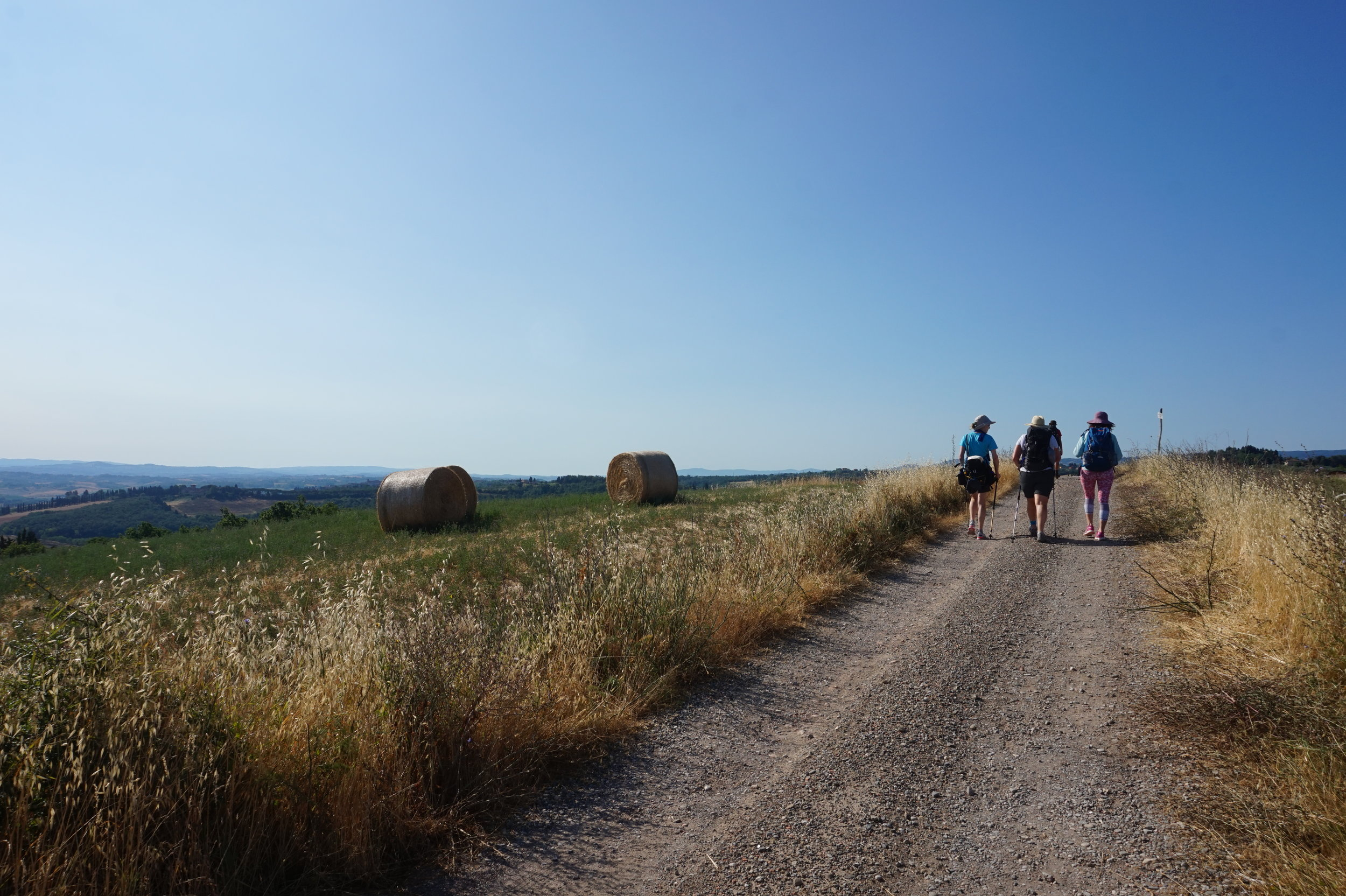 Hike Walk Tuscany Via Francigena