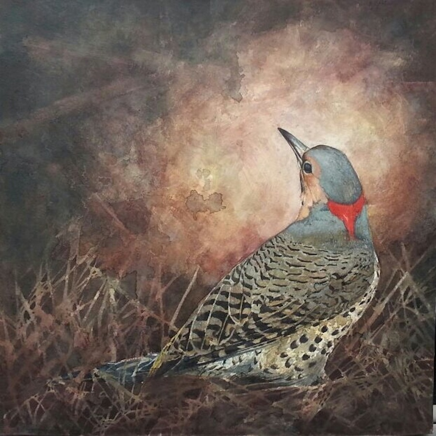 Northern Flicker,  watercolor on paper adhered to canvas