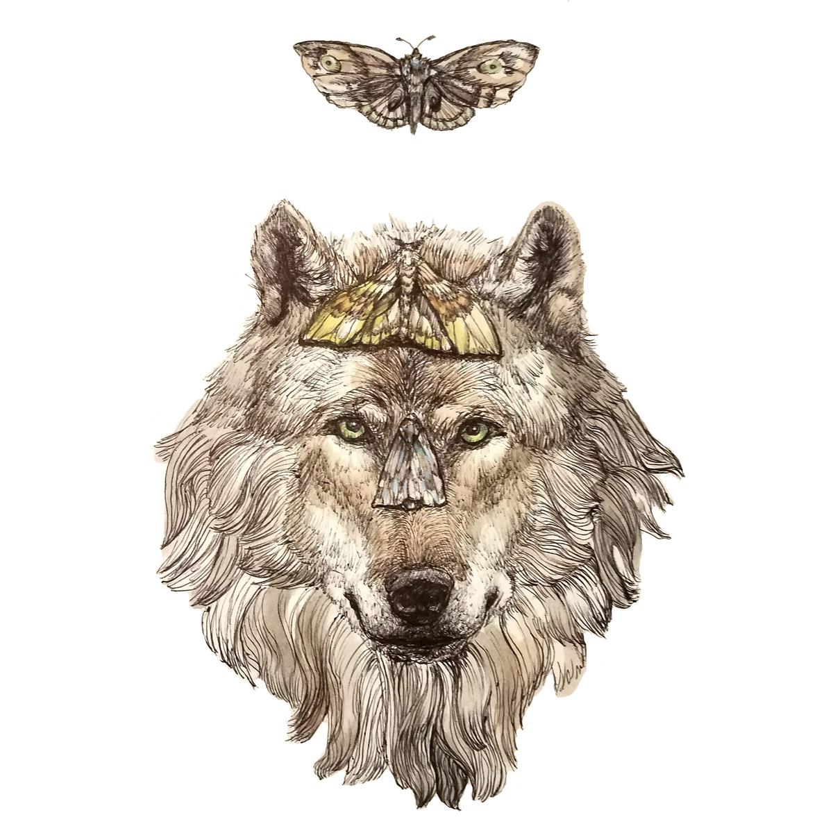 mothwolf2.jpg