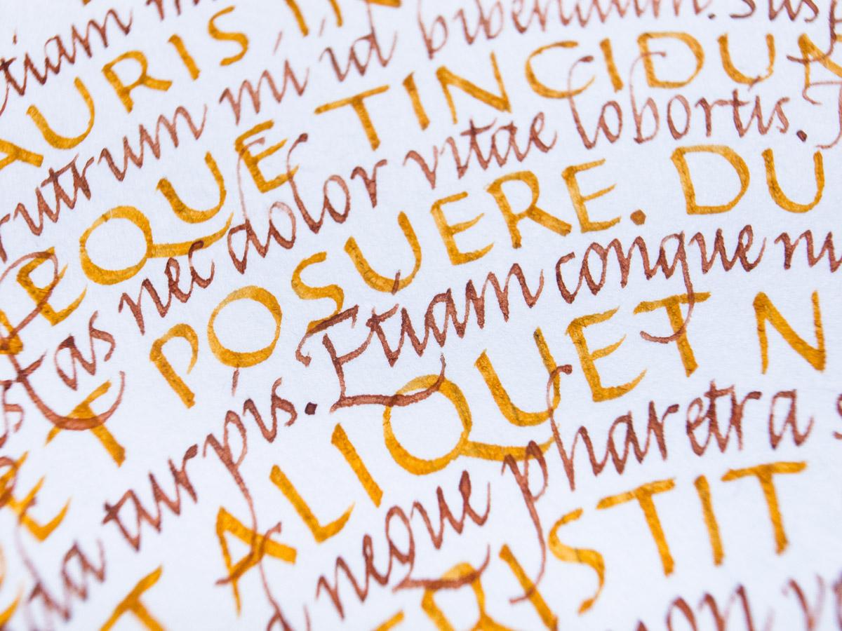Yellow-Roundel-Detail-3-Joan-Quiros.jpg