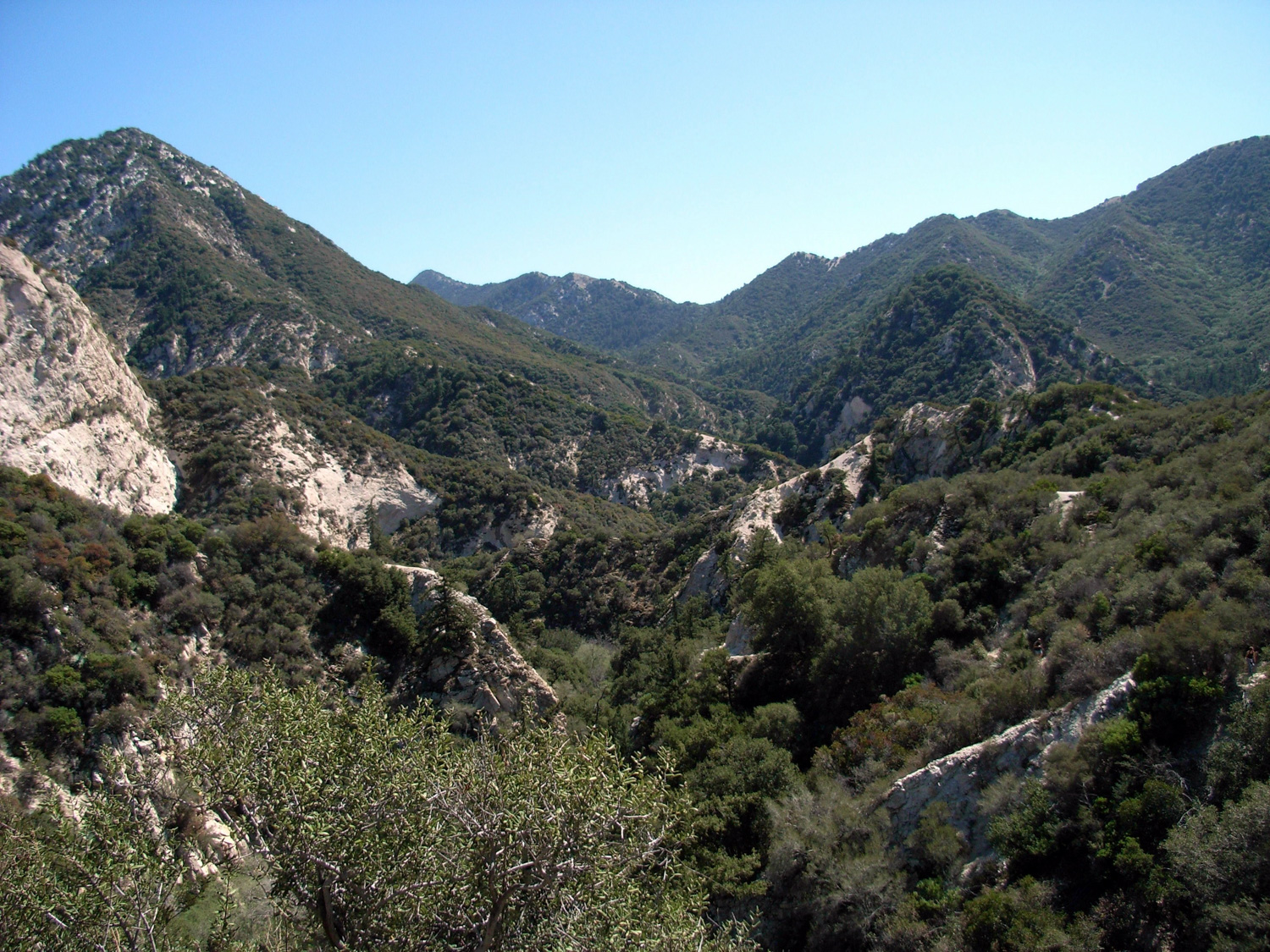 bear-canyon-8.jpg