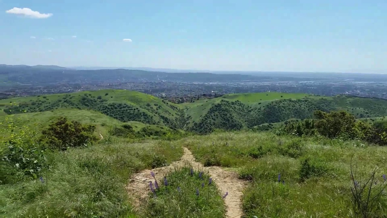 Gilman Peak - DIFFICULTY: 3/5SCENERY: Views of LA and San Gabriel Mountains (Think Griffith Observatory but from a different angle)FUN FACT: The Chino Hills sit on top of one of the many geologic fault zones in SoCal