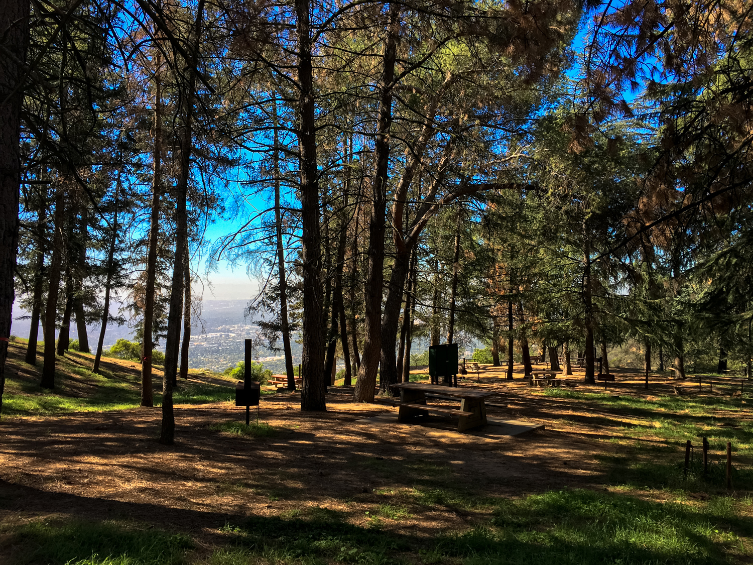 PEAK: Henninger Flats - DIFFICULTY: 3/5SCENERY: Rolling hills, greenery, and hopefully the Downtown LA skyline!FUN FACT: From 1891 to 1936, horse and carriage riders (and later, early automobiles) could climb up to the top of Mount Wilson from Altadena.