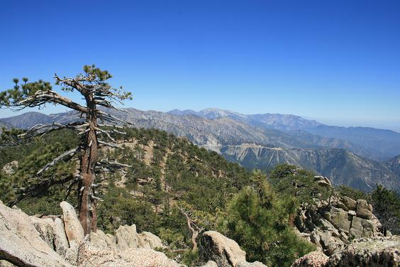 PEAK: Mount Waterman - DIFFICULTY: 4/5SCENERY: Boulder formations, pines and creeksFUN FACT: This area doubles as a ski resort in the winter (maybe we'll find some leftover snow!)