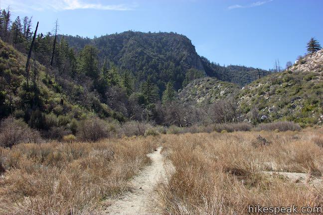 Strawberry_Meadow_San_Gabriel_Mountains_Hike_0645.jpg