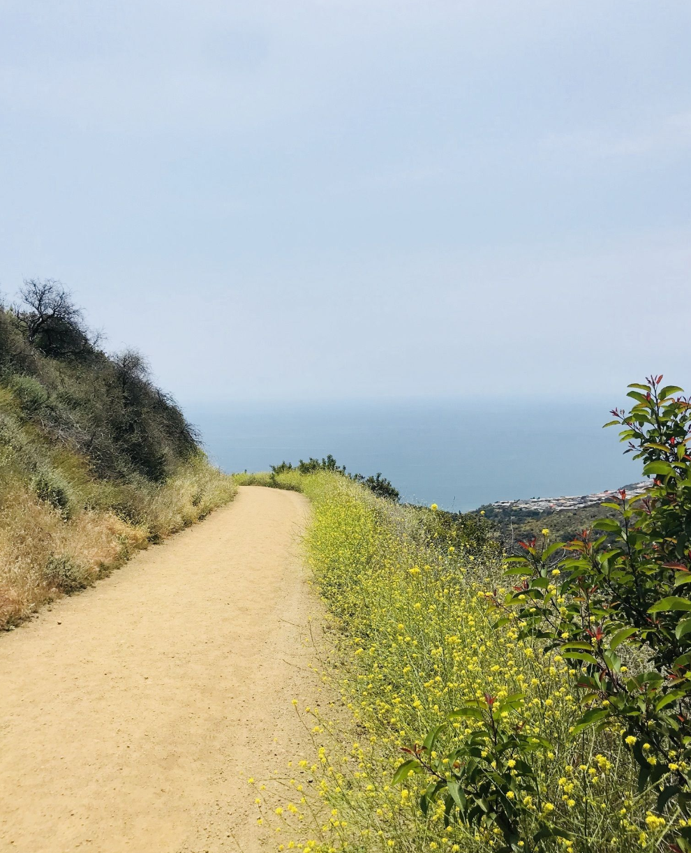 PEAK: Los Liones - DIFFICULTY: 2/5 (4.5 miles, 1200 feet of elevation gain)SCENERY: sun, wildflowers, coastline, more sunFUN FACT: You can see mountains, the beach, and the city all at once on this hike!