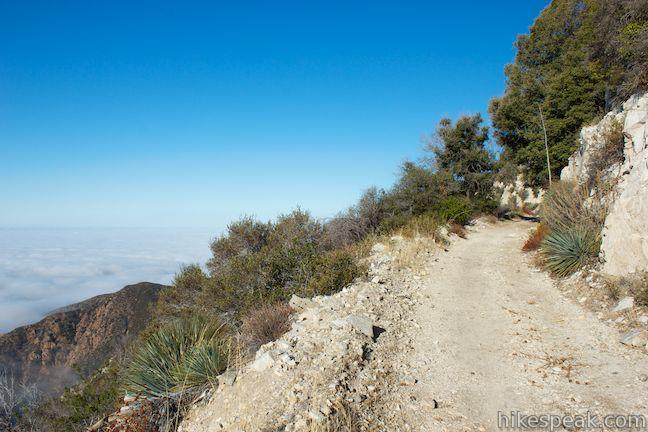 Mount_Lowe_Road_hike_0631.jpg