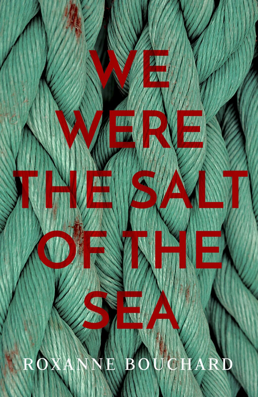 salt-of-the-sea-cover-vis-preview_orig.jpeg