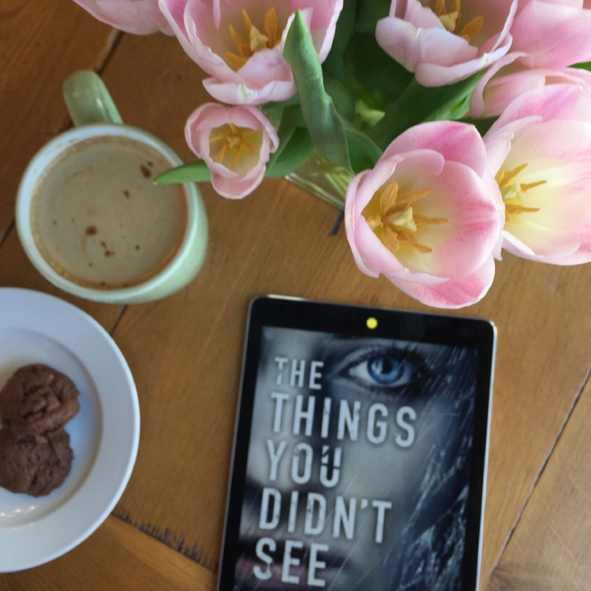 Book Review for THE THINGS YOU DIDN'T SEE by Ruth Dugdall (2)