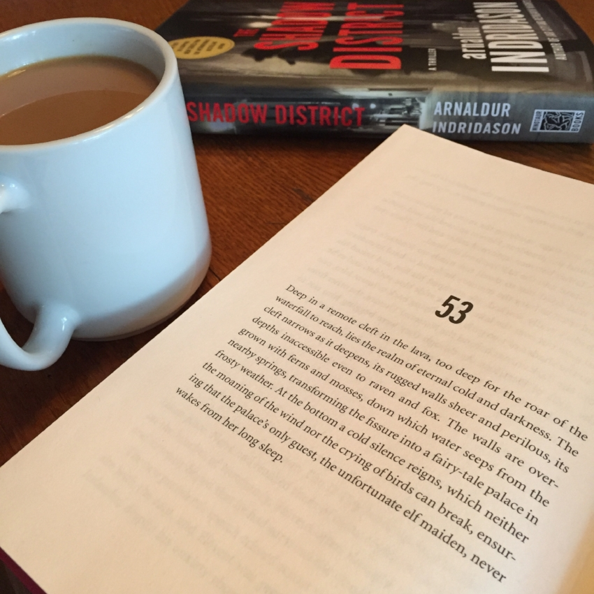 Book Review for THE SHADOW DISTRICT by Arnaldur Indridason 2