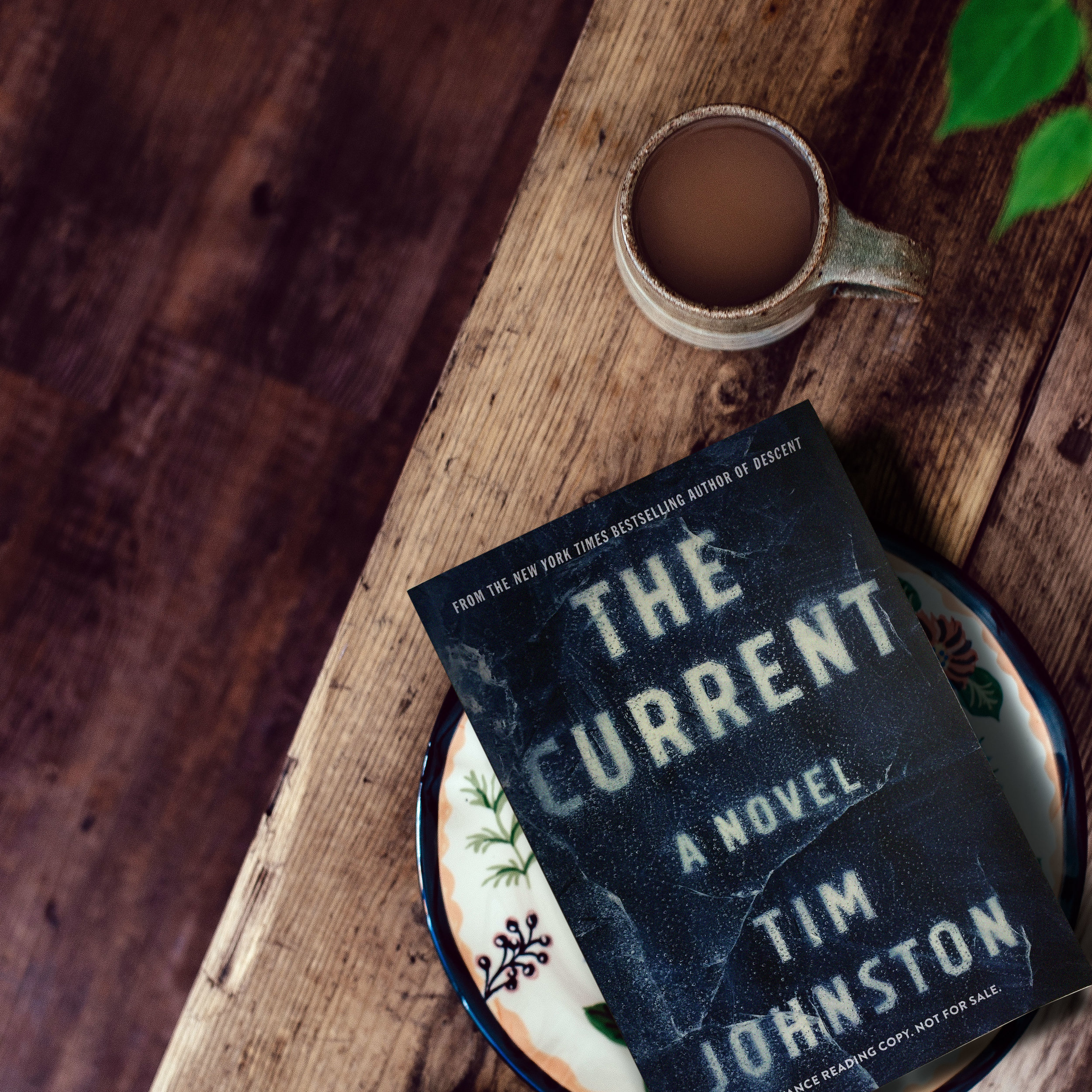 Read an Excerpt for Tim Johnston's THE CURRENT
