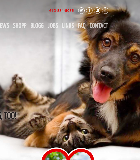Copy, Cats, Creative - Making a pet-sitting service stand out these days is kind of like finishing our grandma's meatloaf: often attempted, rarely achieved.Luckily for this one-stop, four-paws pet service, we found them a voice that's as zany and fun as the pups they care for.