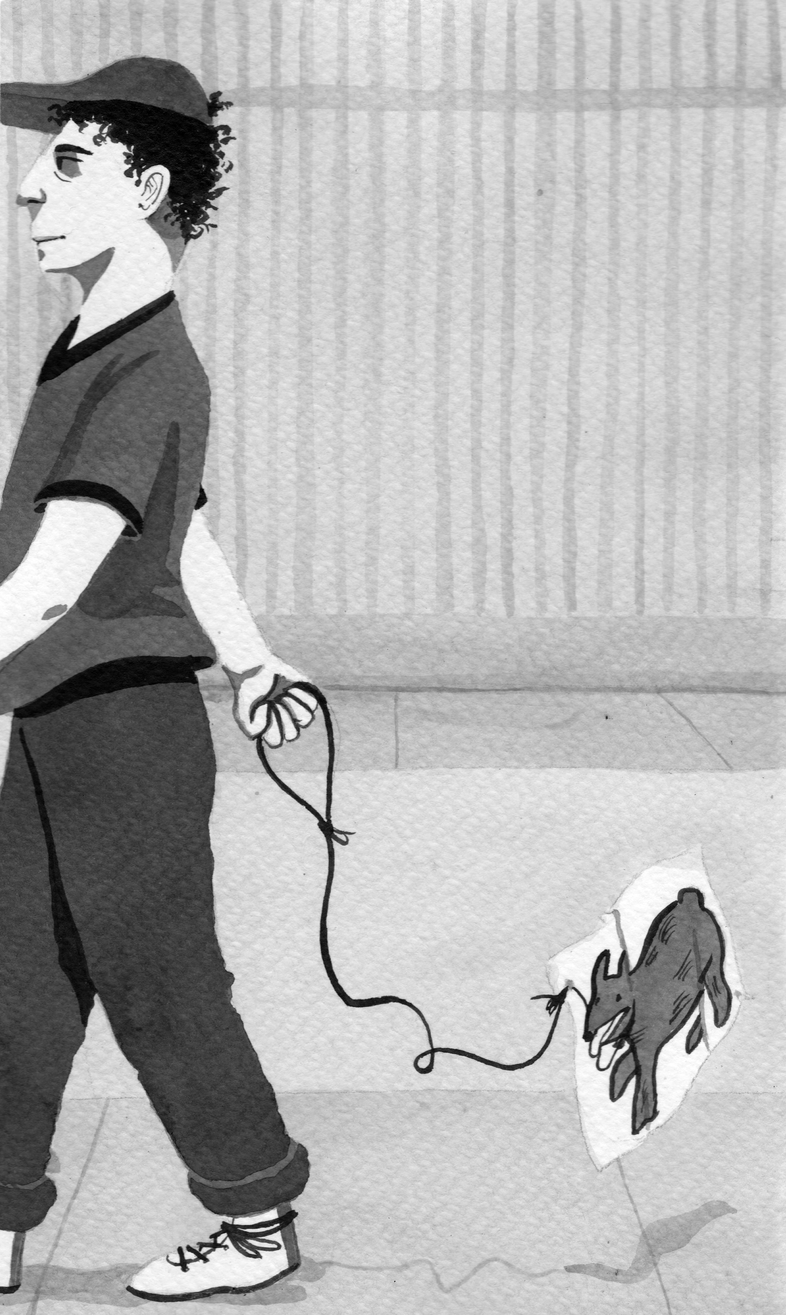 dogs 1.jpg