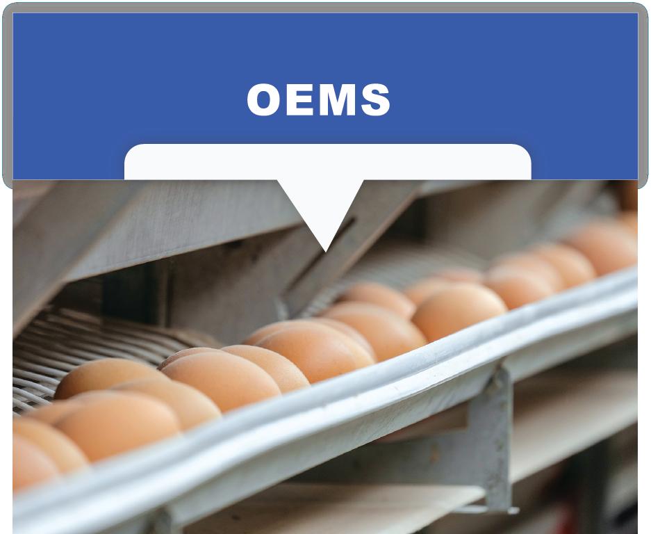 Polypropylene egg belts for OEMs