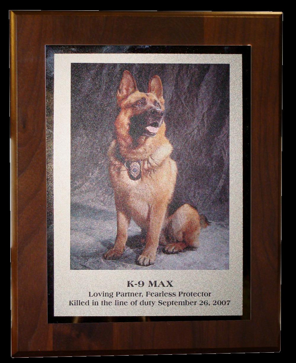 K9 Max plaque.png