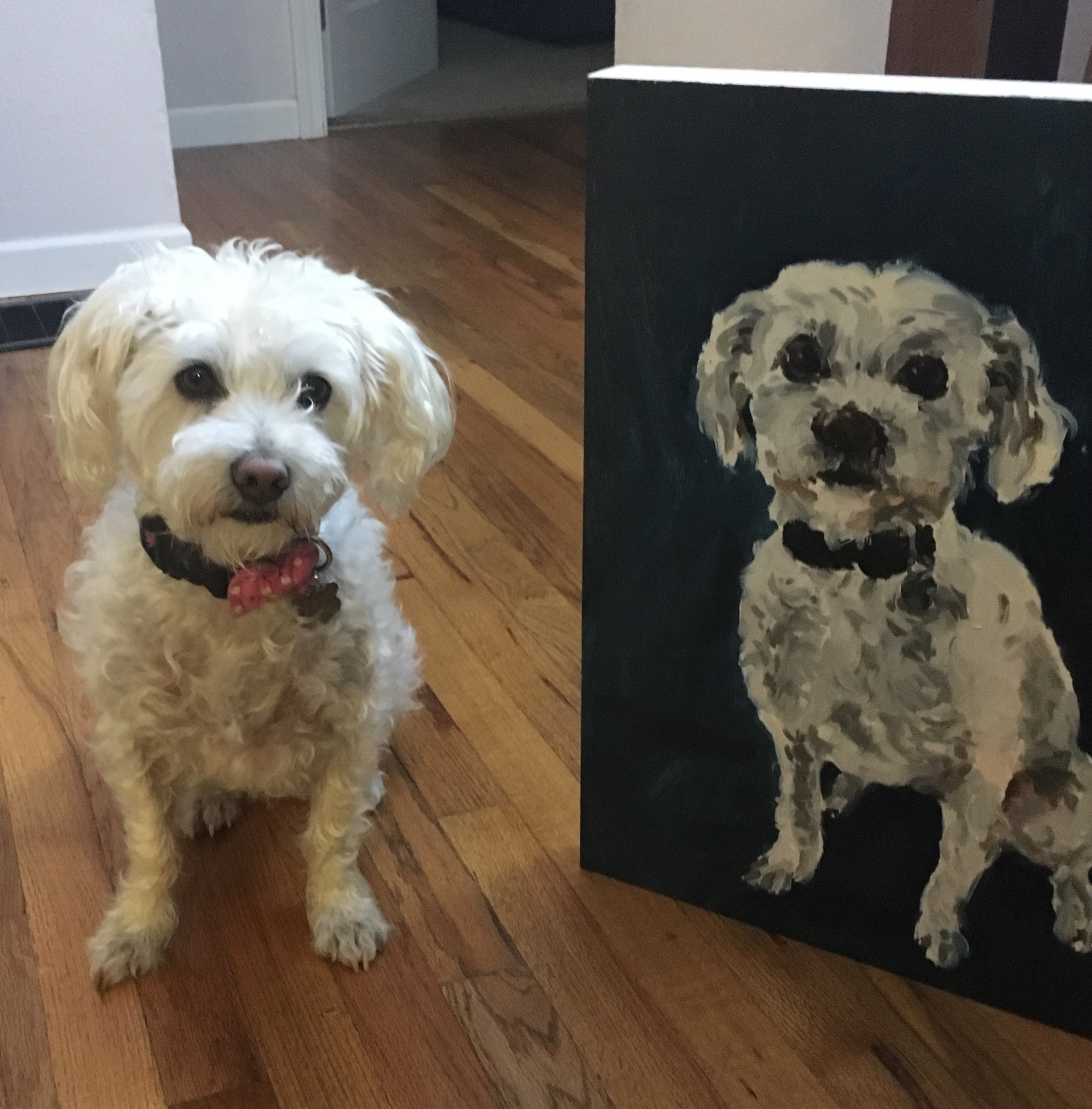 Lucy Pet Portrait Commission