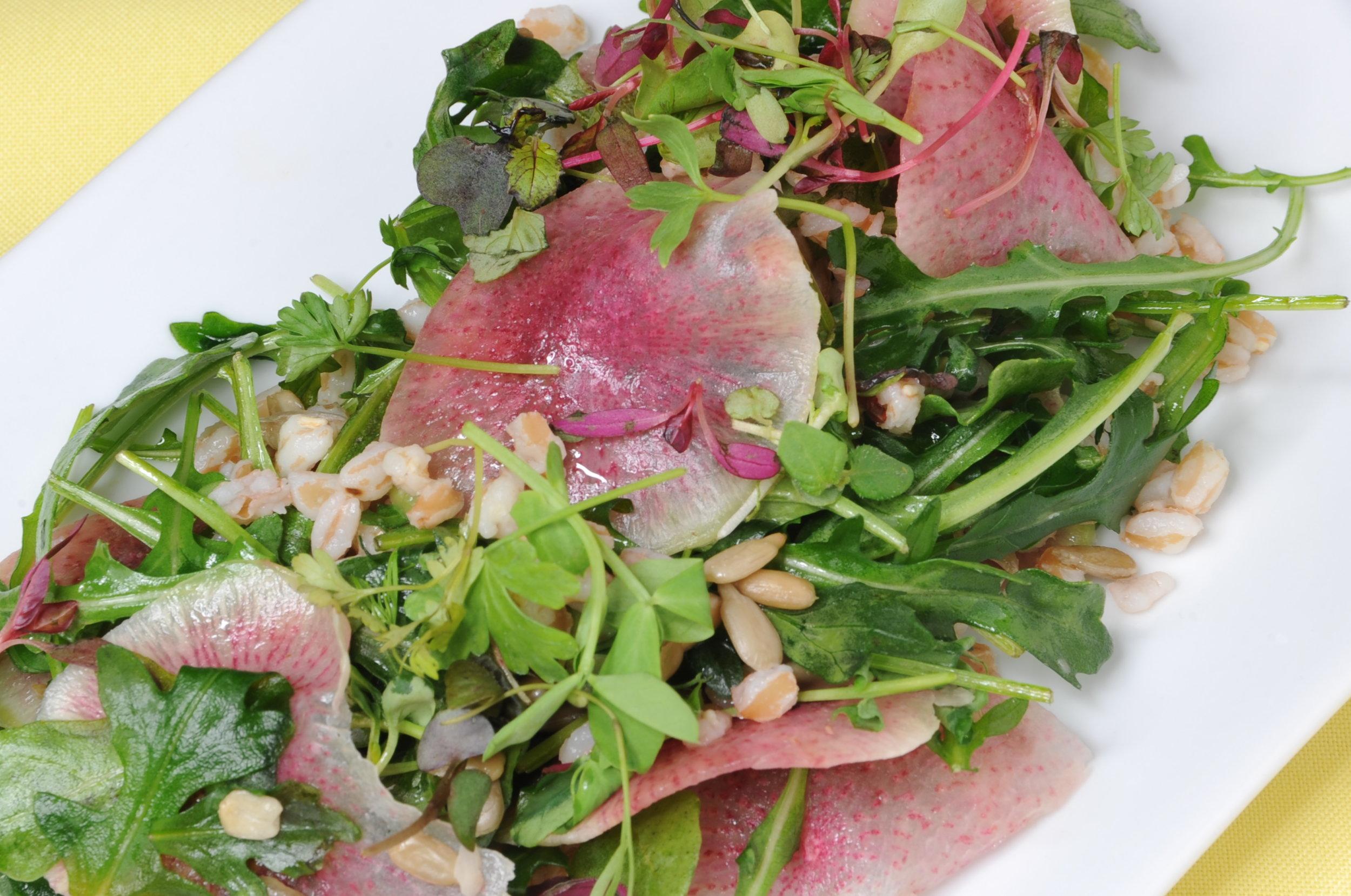 Watermelon Radish and Arugula Salad