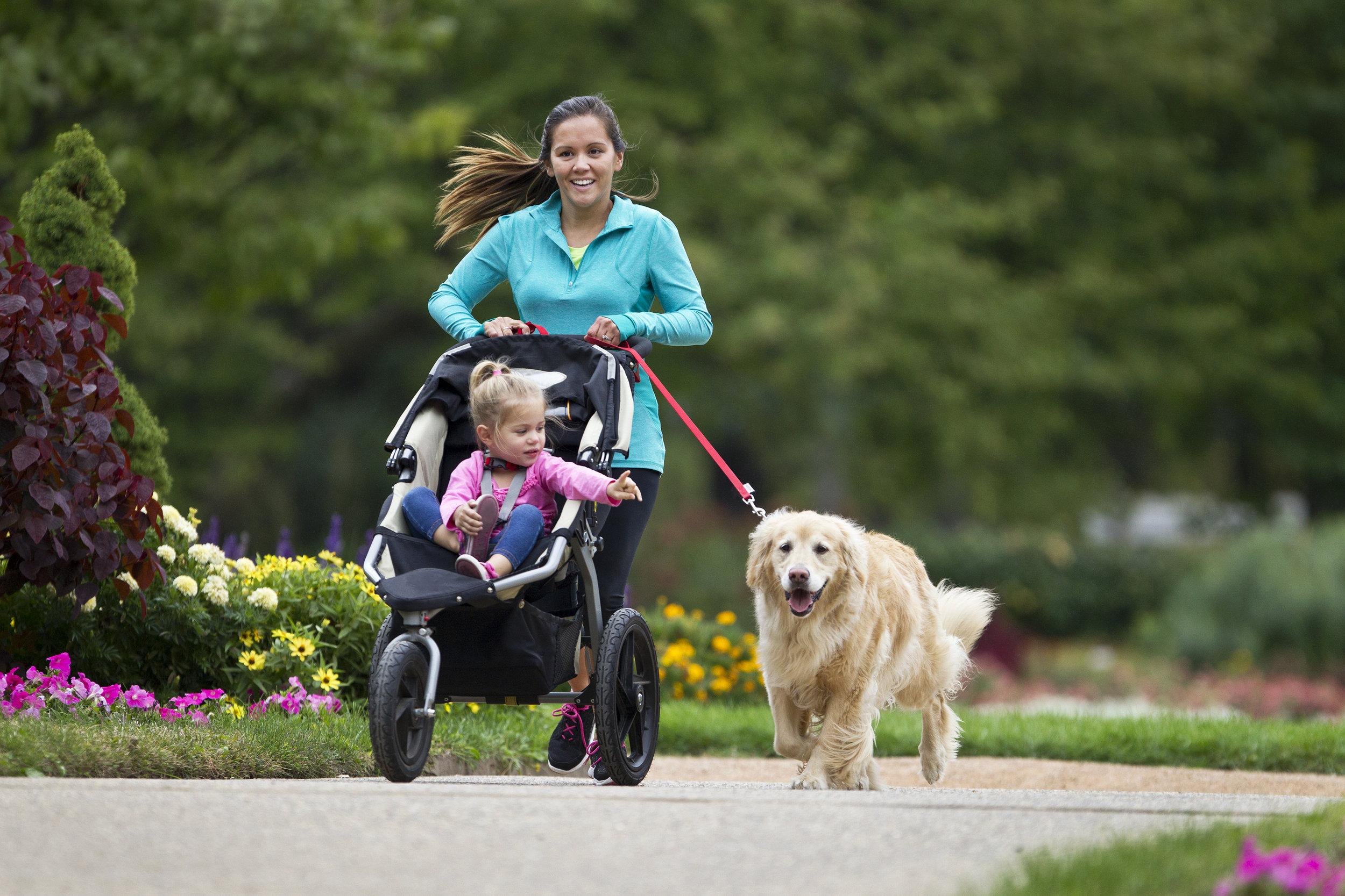 Family Dog Kid Running iStock-488155287.jpg
