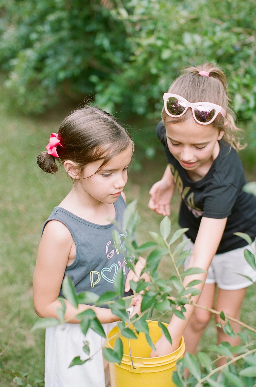 Summer Blueberry Picking Kids on Film Mississippi-6.jpg